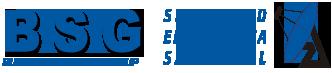 BSG Electrónica